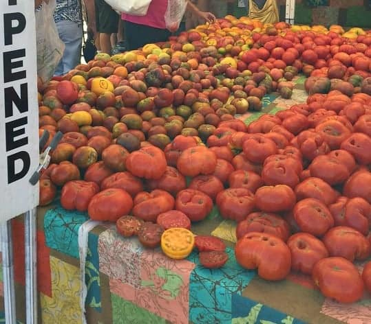 Table of tomatoes at farmers market