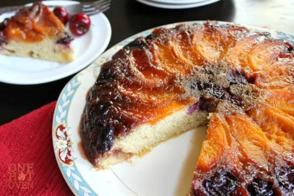 A baked apricot cake on a white platter with a blue border.