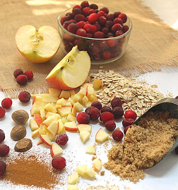 oatmeal, cranberryes and apples