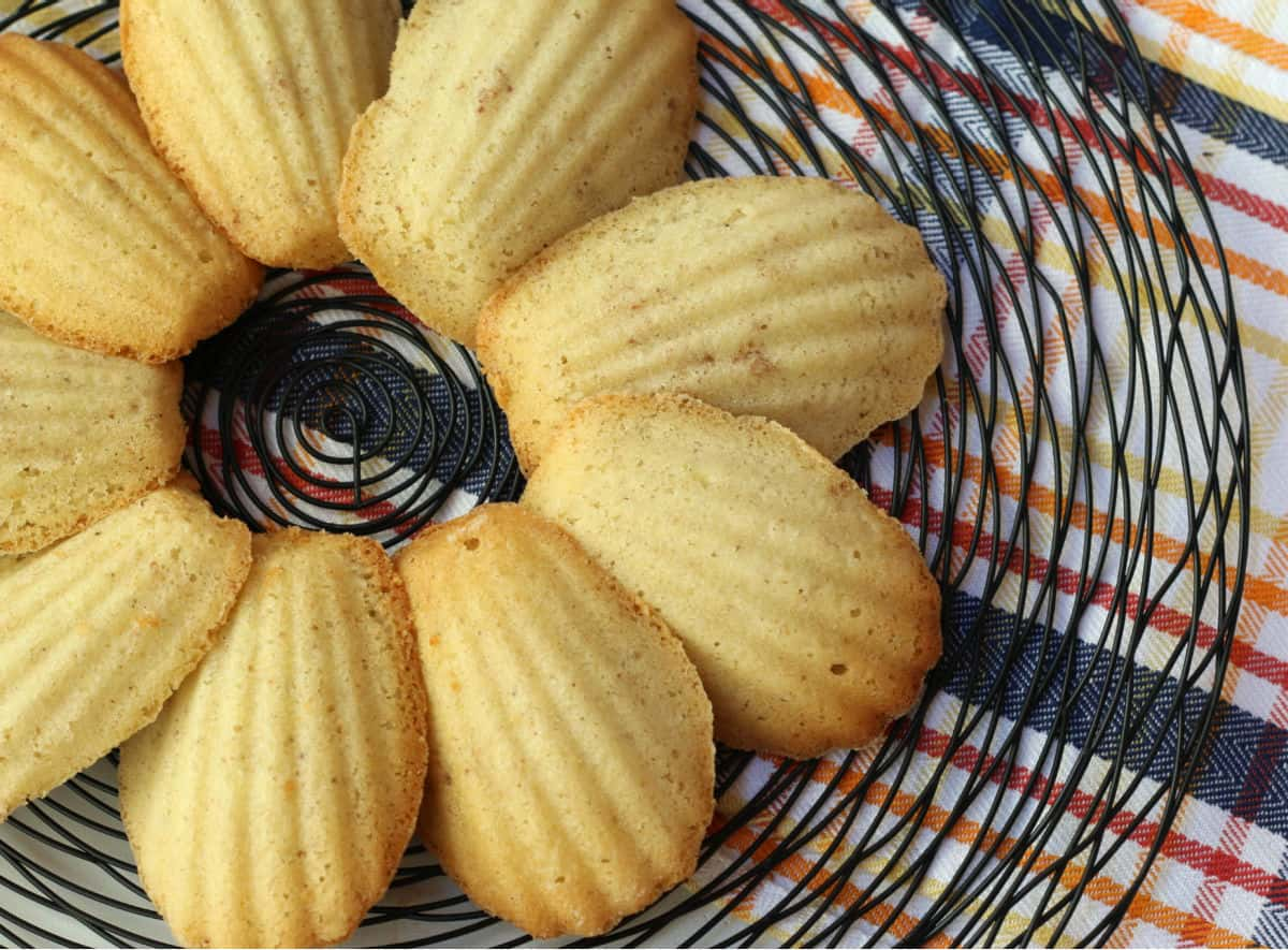 Baked madeleines on a tray.