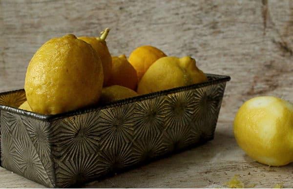 just picked lemons