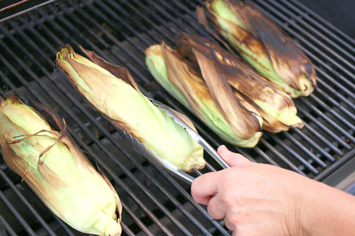Grilling corn on the cob in the husk.