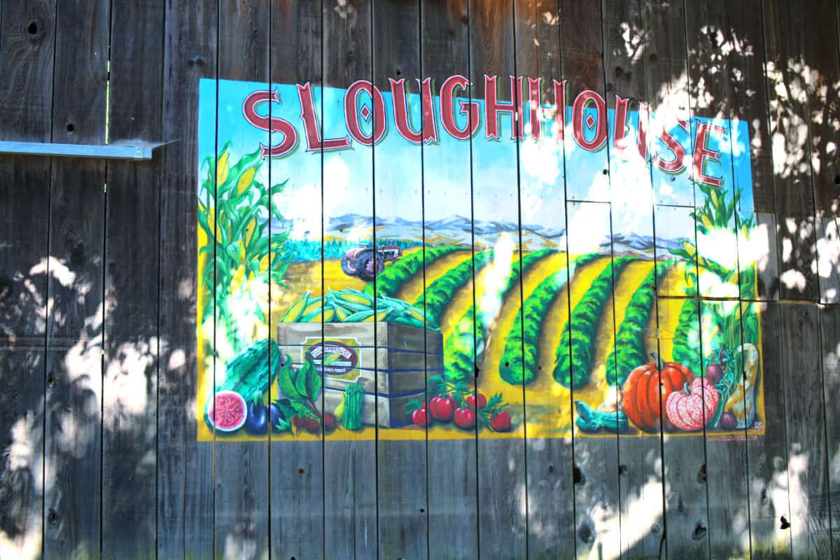 A painted sign for SloughHouse on the side of a barn.