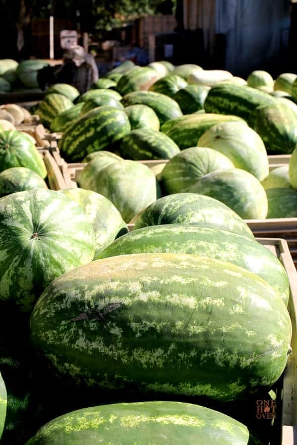 large oval watermelons