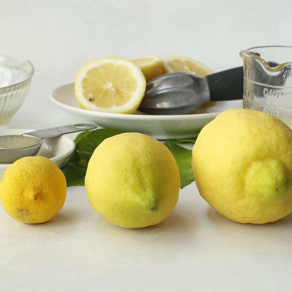 different lemon sizes