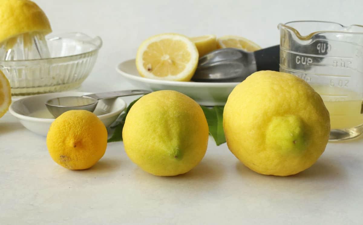 three lemon sizes