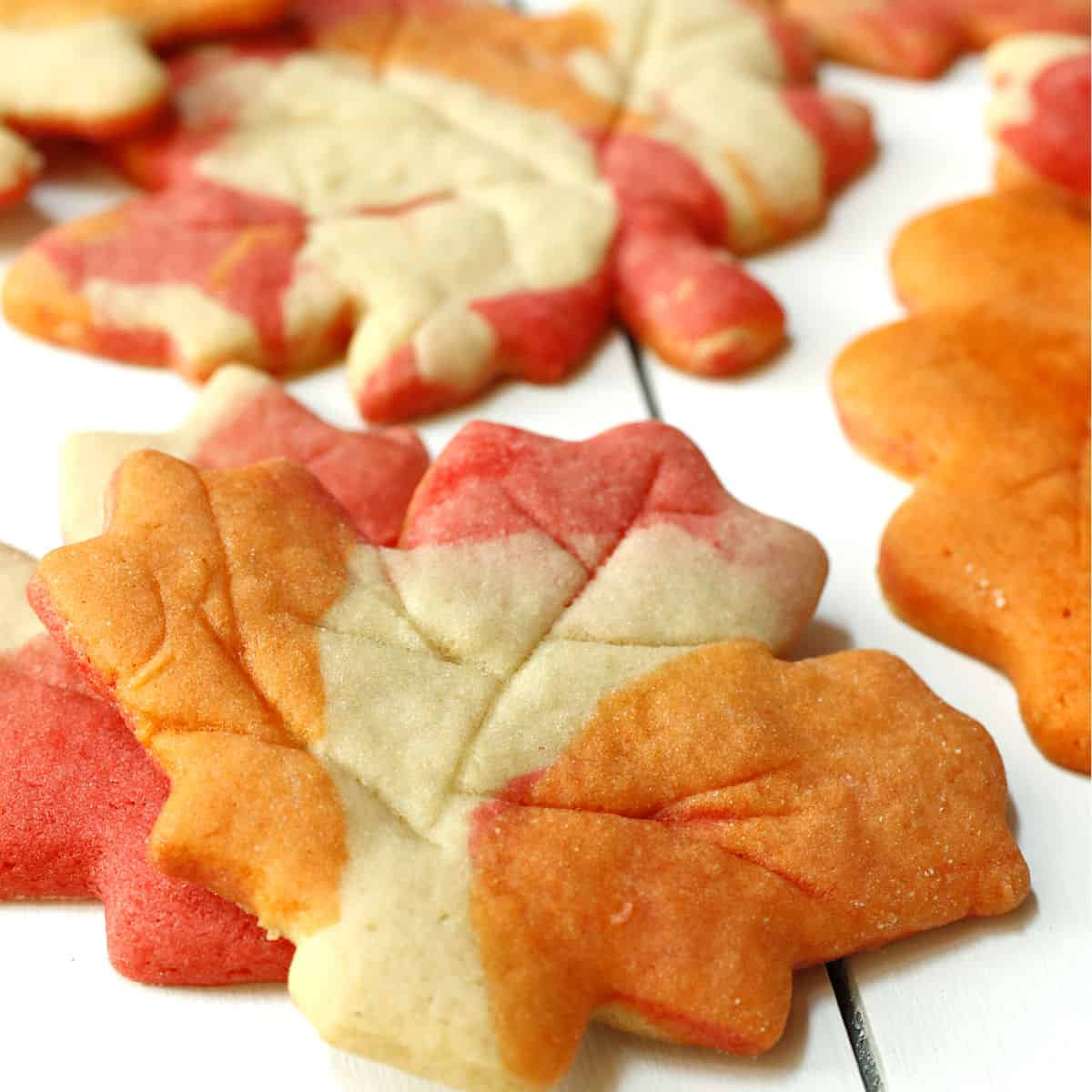 Maple leaf sugar cookies.