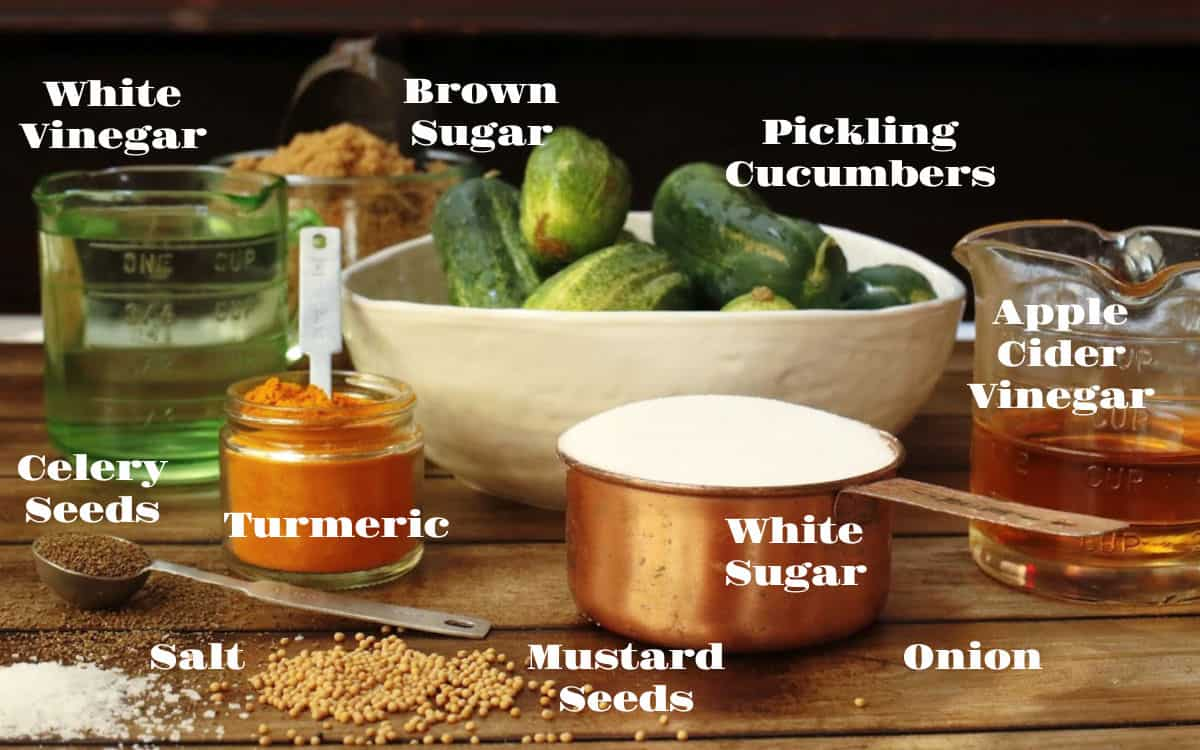 Ingredients to make pickles, cucumbers, vinegars and spices.
