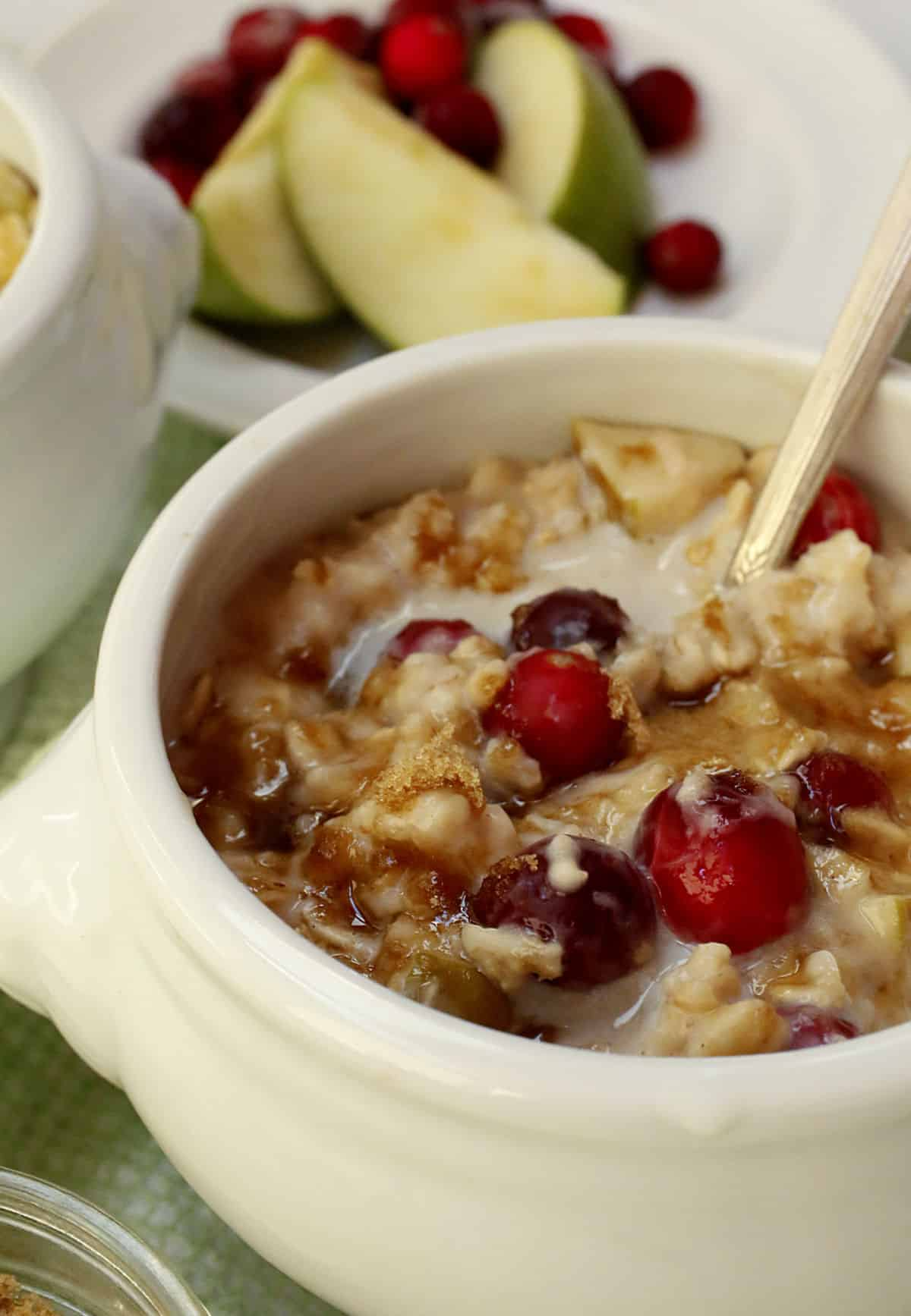 A white bowl of cranberry oatmeal.